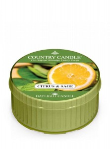 Świeca zapachowa daylight Citrus&Sage Country Candle