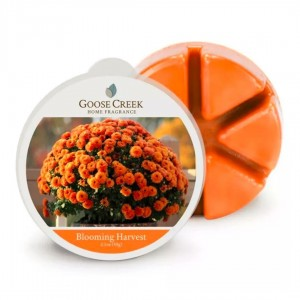 Wosk zapachowy Blooming Harvest Goose Creek Candle