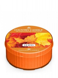 Świeca zapachowa daylight Leaves Country Candle